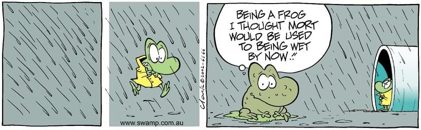 Swamp Cartoon - RainOctober 2, 2002