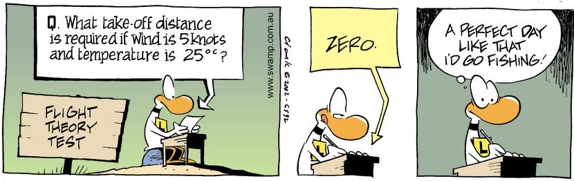 Swamp Cartoon - Test QuestionNovember 1, 2002