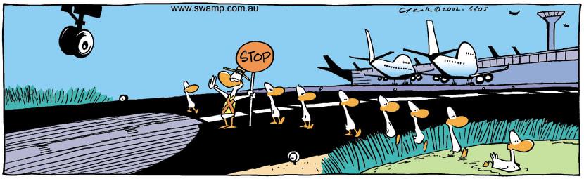 Swamp Cartoon - StopNovember 16, 2002