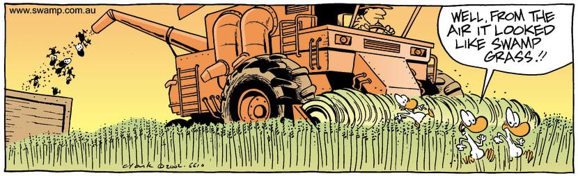 Swamp Cartoon - WheatNovember 22, 2002