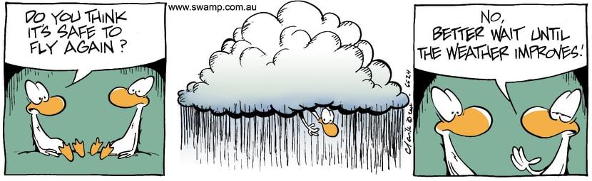 Swamp Cartoon - Safe FlyingDecember 9, 2002
