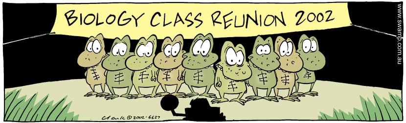 Swamp Cartoon - Biology ReunionDecember 12, 2002