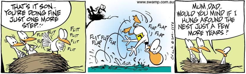 Swamp Cartoon - BeginnerJanuary 15, 2003