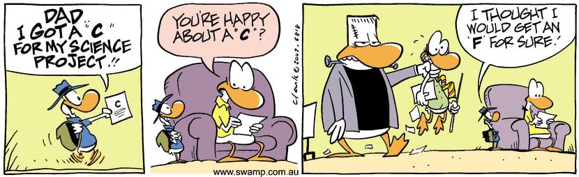 Swamp Cartoon - Science ProjectJuly 22, 2003