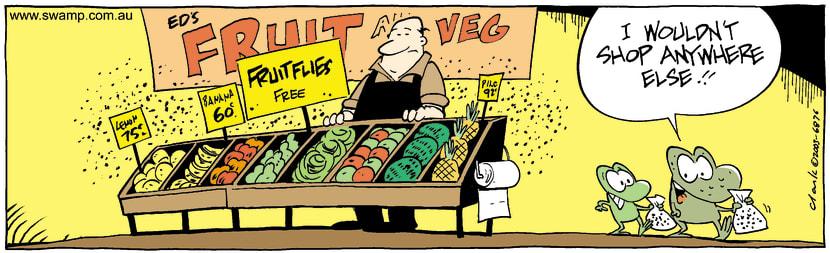 Swamp Cartoon - Fruit FliesSeptember 27, 2003