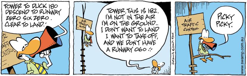 Swamp Cartoon - Clear To LandNovember 1, 2003