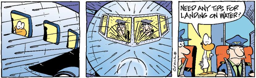 Swamp Cartoon - Crash Landing on Water ComicNovember 7, 2003