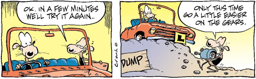 Swamp Cartoon - Drive LessonNovember 8, 2003