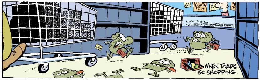 Swamp Cartoon - Toad ShoppingNovember 18, 2003