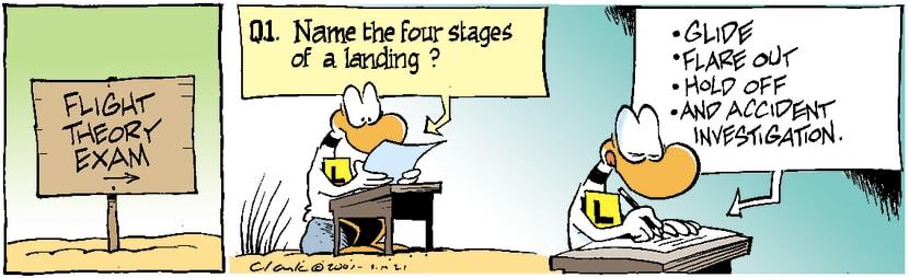 Swamp Cartoon - Ding Duck Landing ComicNovember 21, 2003