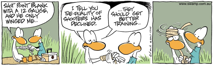 Swamp Cartoon - Point BlankDecember 22, 2003