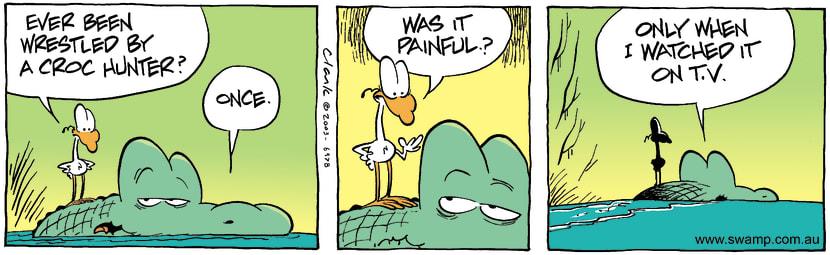Swamp Cartoon - Croc HunterJanuary 24, 2004