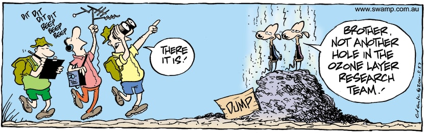 Swamp Cartoon - ResearchFebruary 17, 2004
