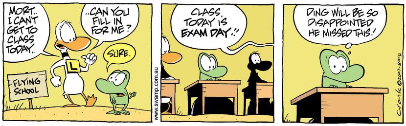 Swamp Cartoon - Mort Frog ReplacementMay 17, 2007