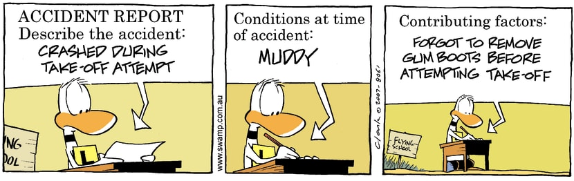 Swamp Cartoon - Exam 1July 11, 2007