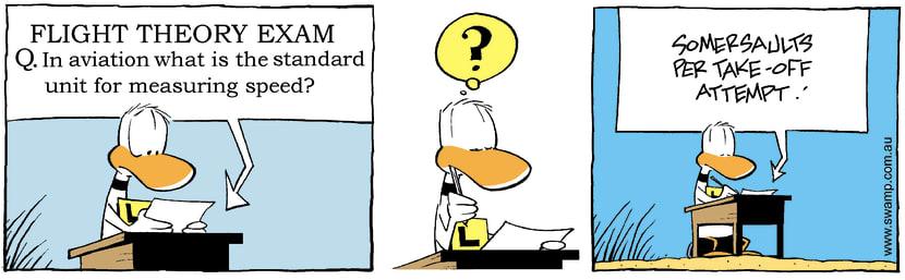 Swamp Cartoon - Exam time againAugust 23, 2007