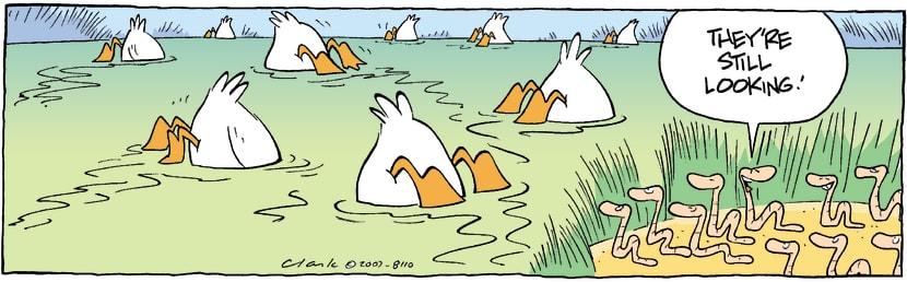 Swamp Cartoon - Worms Outwitted DucksSeptember 6, 2007