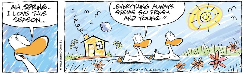 Swamp Cartoon - Kids BizSeptember 26, 2007