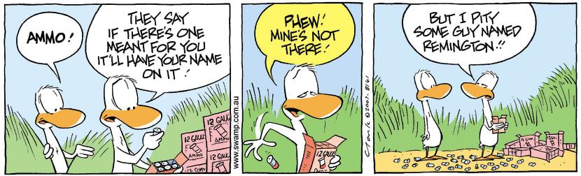 Swamp Cartoon - Duck Hunting in reverse 3October 12, 2007