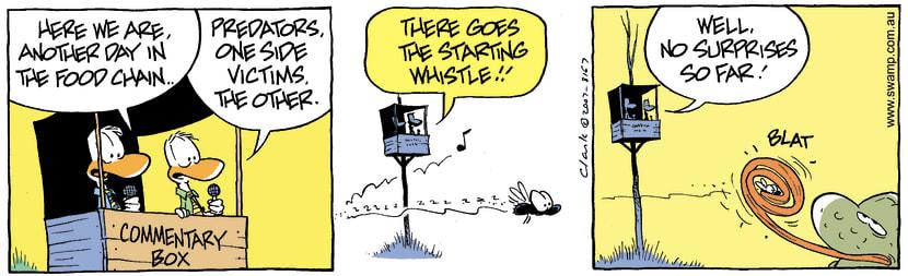 Swamp Cartoon - Commentary Box 1November 12, 2007