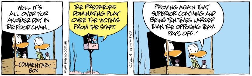 Swamp Cartoon - Commentary Box 3November 14, 2007