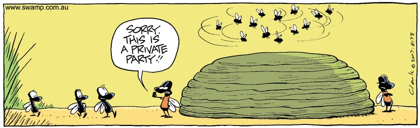 Swamp Cartoon - Flies Exclusive GatheringNovember 19, 2007