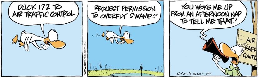 Swamp Cartoon - Rude awakeningDecember 7, 2007