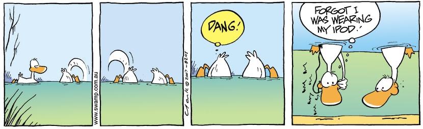 Swamp Cartoon - Accident MiseryDecember 26, 2007