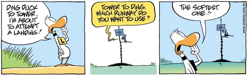 Swamp Cartoon - Ding Duck Soft Landing ComicFebruary 16, 2008