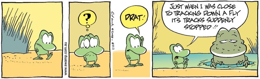 Swamp Cartoon - Confused TrackerMay 10, 2008