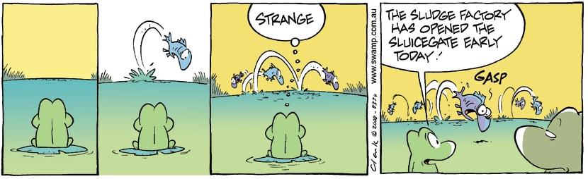Swamp Cartoon - Health alertMay 24, 2008
