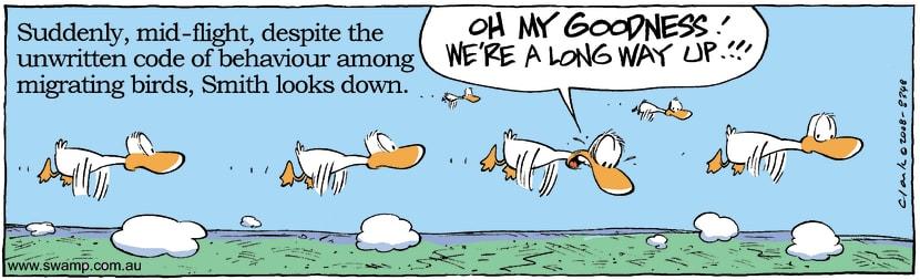 Swamp Cartoon - The Golden RuleJune 9, 2008