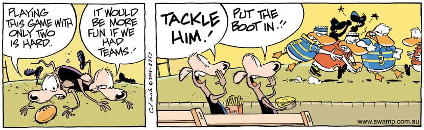 Swamp Cartoon - Footy Fun 3June 26, 2008