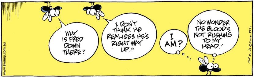 Swamp Cartoon - Fly Fun 1July 12, 2008
