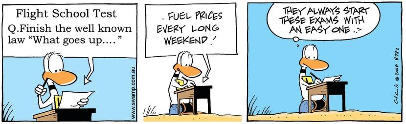 Swamp Cartoon - Ding Duck Test ComicJuly 18, 2008