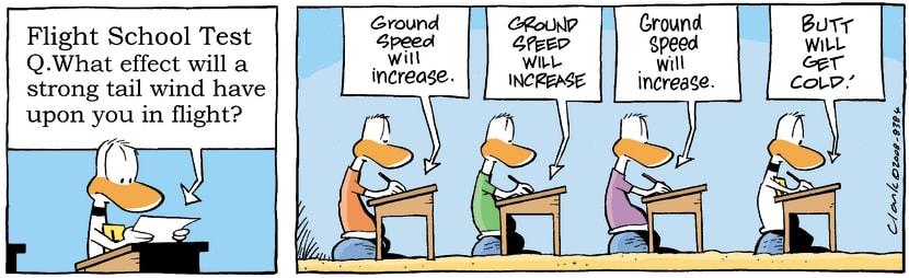Swamp Cartoon - Ding Duck Test ComicJuly 21, 2008