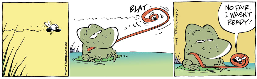 Swamp Cartoon - Playing the Game 2August 13, 2008