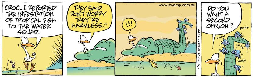 Swamp Cartoon - Exotic Fun 3November 13, 2008