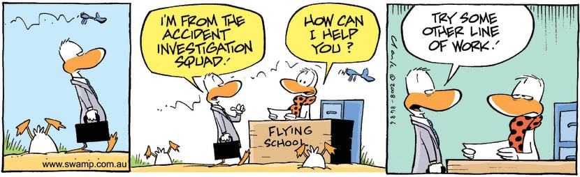 Swamp Cartoon - Vocational AdviceNovember 17, 2008