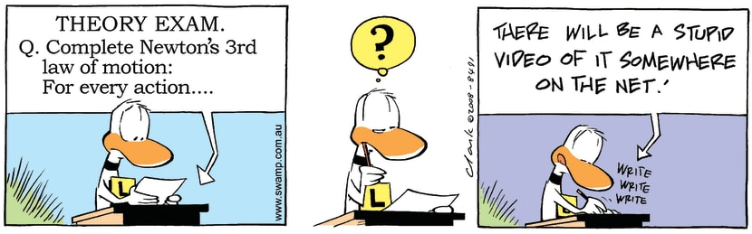 Swamp Cartoon - Theory Exam Fun 1November 22, 2008
