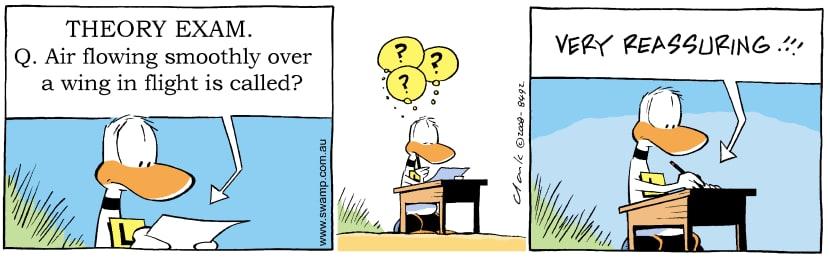 Swamp Cartoon - Ding Duck Theory Exam ComicNovember 24, 2008