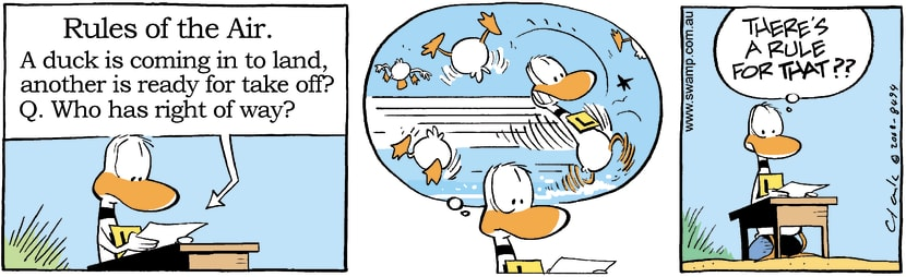 Swamp Cartoon - Ding Duck Rules of the Air ComicNovember 26, 2008