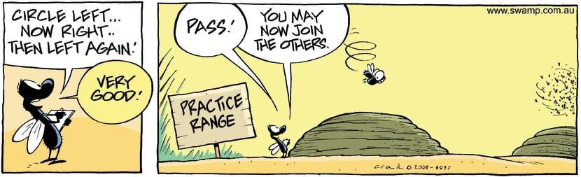 Swamp Cartoon - Flying TestNovember 27, 2008