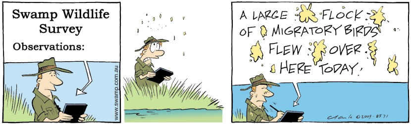 Swamp Cartoon - Swamp Ducks OverheadFebruary 24, 2009
