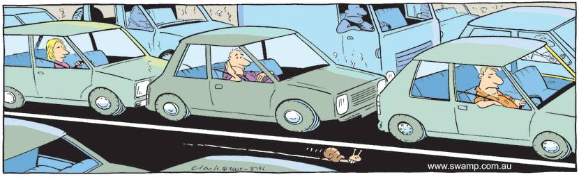Swamp Cartoon - Snail Express LaneNovember 13, 2009