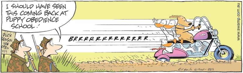 Swamp Cartoon - Duck Hunters Dog Gone BadDecember 10, 2009