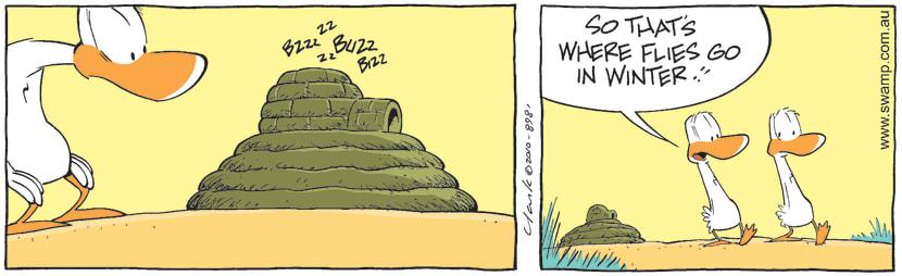 Swamp Cartoon - Climate ChangeJune 17, 2010