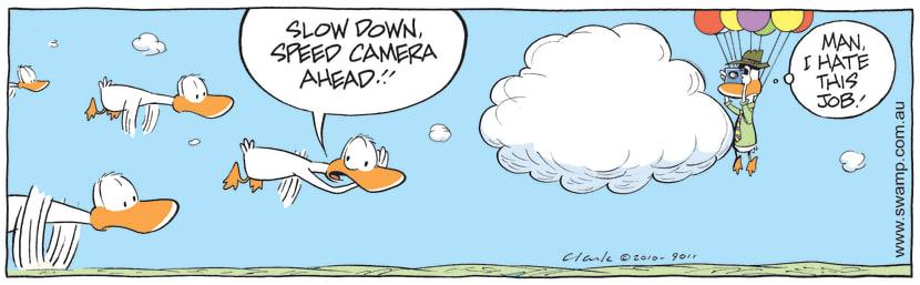 Swamp Cartoon - Ducks and Speed Camera ComicJuly 22, 2010