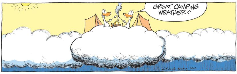 Swamp Cartoon - Good ChoiceJuly 23, 2010