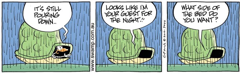 Swamp Cartoon - Turtle Pouring Rain ComicAugust 30, 2010